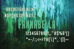 FannaBella Typeface Product Image 2