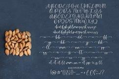 Almond Love Script Font Product Image 3