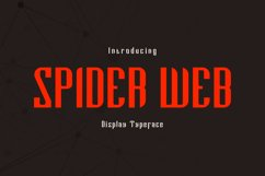 Spider Web Product Image 1