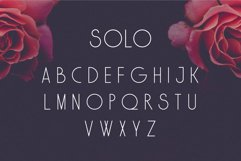 SOLO Product Image 6