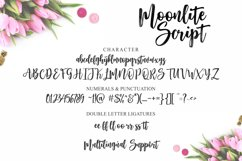 Moonlite Script Product Image 2