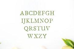 Jerricca Serif Typeface Product Image 2