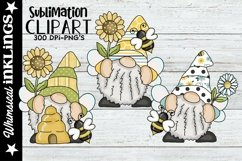 Bumble Bee Wings Gnomes Sublimation Set Product Image 1