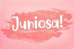 Web Font Juniosa Product Image 1