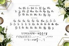 Web Font Sabilo Script Font Product Image 5