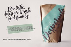 Ragtime - Brush Font Duo Product Image 2