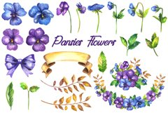 Watercolor pansy flower Product Image 2