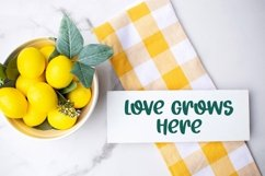 Web Font Spring Fair - A Quirky Hand-Lettered Font Product Image 3