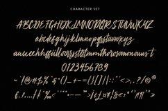 Aprictoos Signature Brush Font Product Image 9
