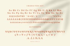 Red Honey - Retro Font Product Image 2