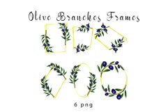 Olive branches set Product Image 2