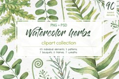 Watercolor herbs. Clipart collection Product Image 1