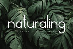 Nature Display Line Font Product Image 1