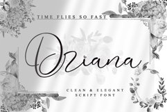 Driana Brideth - WEB FONT - Product Image 1