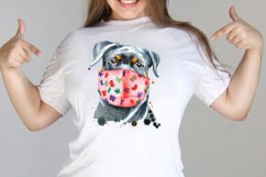 Dogs in face mask Product Image 3