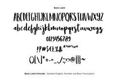 Resign Modern Brush Font Product Image 2