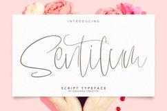 Sentilum Script Calligraphy Handmade Font Typeface Product Image 1