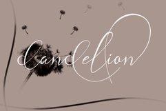 andora rdelion Product Image 6