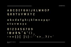 Rubric Sans Serif Font Product Image 6
