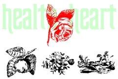Nature Breathe Product Image 3
