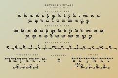 Reverse Vintage Product Image 2
