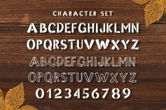Web Font Planked Product Image 4