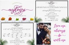 Best Seller Calligraphy Font Bundle Product Image 5