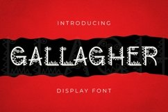 Web Font Gallagher Font Product Image 1