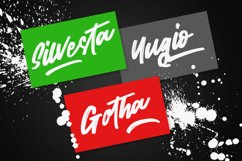 Wild Youth - Brush Script Font Product Image 6