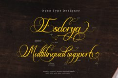 Esdoria Journey Product Image 6