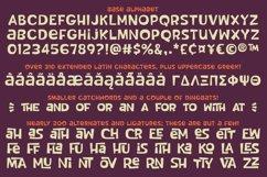 Tropical Punch - a fun retro vintage interlock font! Product Image 2