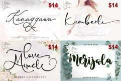 ALL FONT COLLECTION Product Image 2