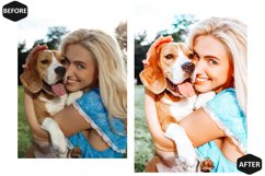 10 Pet And I Photoshop Actions And ACR Presets, Animal Ps Product Image 4