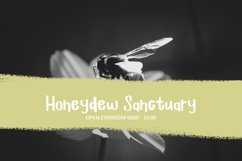 Bee Flat - a handwritten font Product Image 6