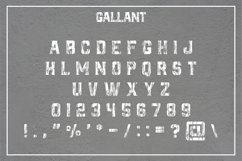 GALLANT - A Textured Display Font Product Image 4