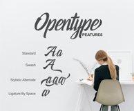Holidays Typeface Product Image 5