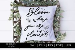 Bloom Where You Are Planted SVG Cut File - SVG PNG JPEG Product Image 2