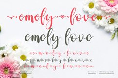 emely love - Beautiful Script Font Product Image 1