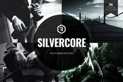 Silvercore B&W Photoshop Actions Product Image 1