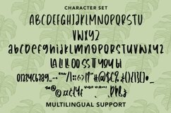 Web Font Transplant - Handwritten Font Product Image 2