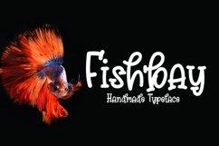 Web Font Fishbay Product Image 1