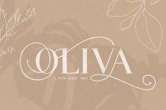 Oliva Serif Font Trio Product Image 1
