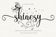 Shinesy Product Image 1