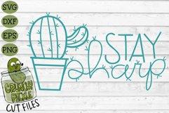 Stay Sharp Cactus SVG Cut File - A Positive Cactus Pun Product Image 2