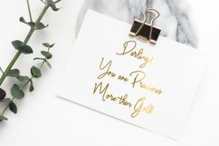 Salute Riches - Handwritten Font Product Image 4