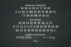 Web Font Unlimited Font Product Image 3