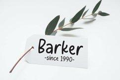 Web Font Rachellina - Handwritten Casual Font Product Image 2