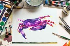 Aquarium - Illustration Set Product Image 4