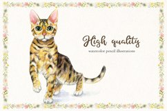 Cats can never have enough! Product Image 8