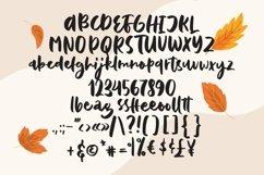 Web Font Baffina - Script Fancy Fonts Product Image 6